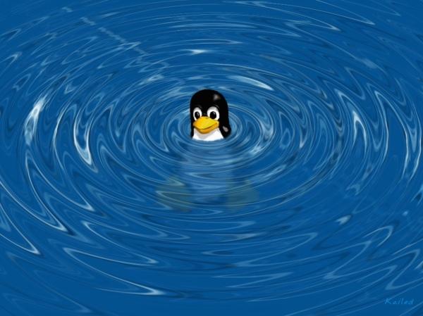 tmp_26545-images.duckduckgo.com(2)2048365445